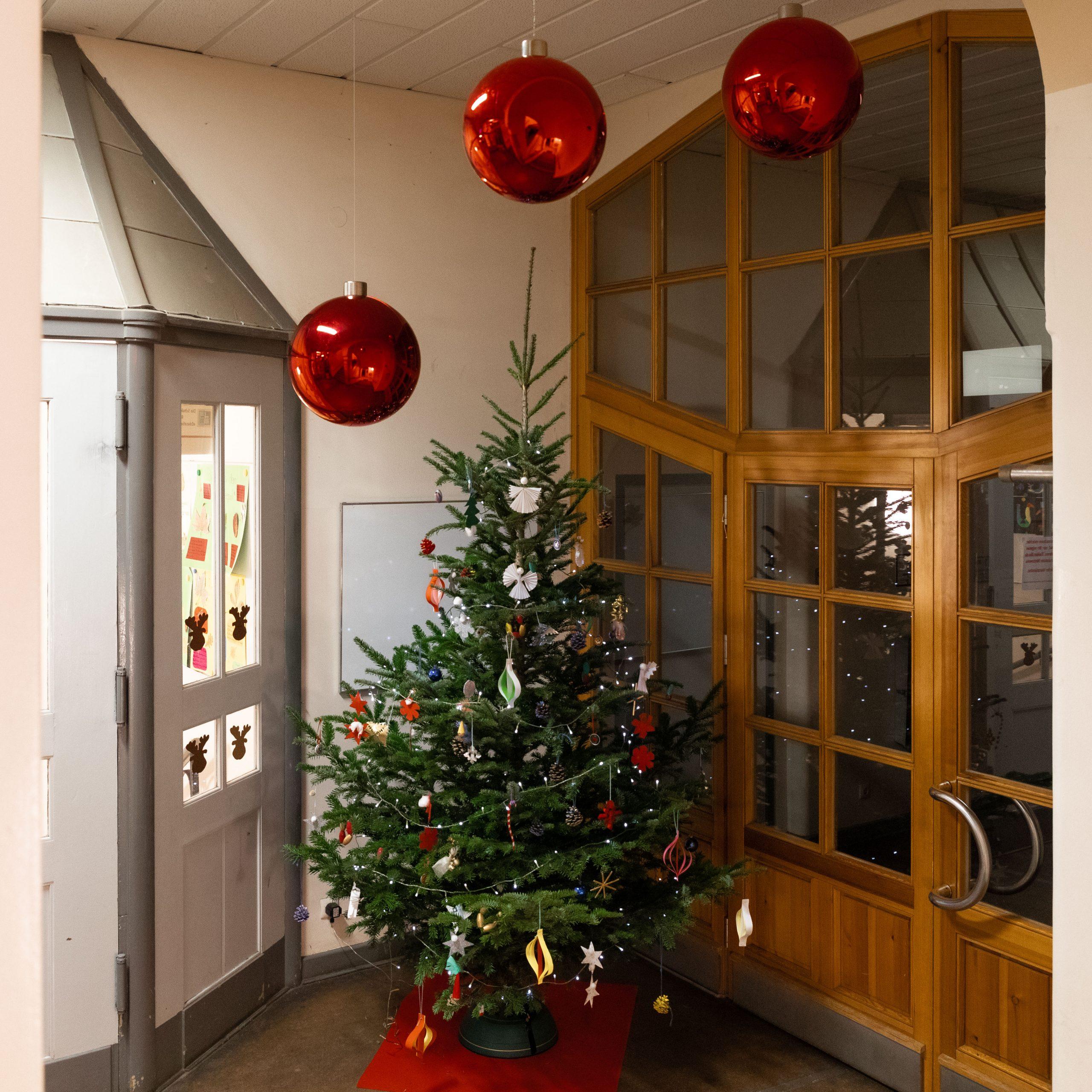Der Weihnachtsbaum im Eingangsbereich der Lietzensee-Grundschule Berlin. © Juergen Arne Klein